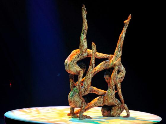 Les Etoiles du Cirque de Pekin